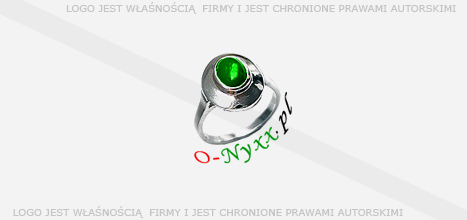 Logo sprzedane: O-nyxx.pl
