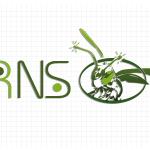 Logo firmy 127 - inne kolory - RNS